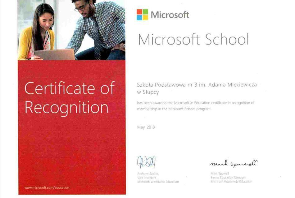 Trójka wwyróżniona wogólnoświatowym programie Microsoft School!